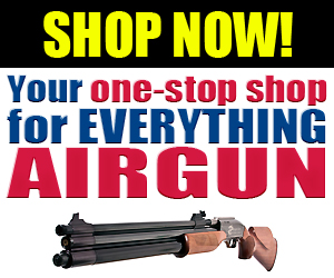 buy most powerful air rifle